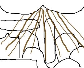 2ch:粪便的俄罗斯方块(微重口谨慎浏览)