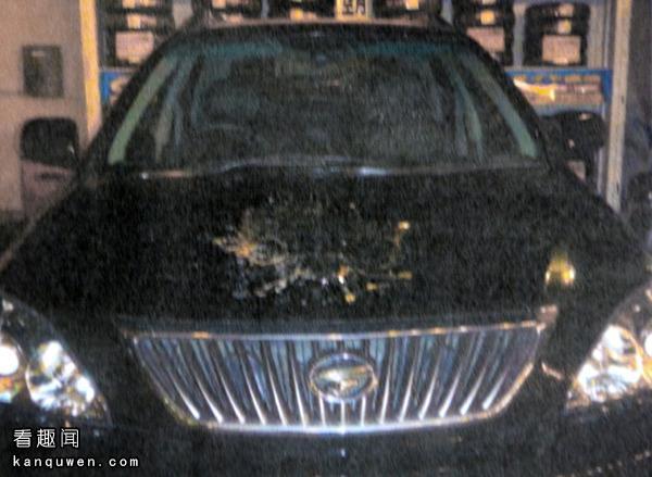2ch:在高速公路上对车投了500个鸡蛋的兄弟被逮捕