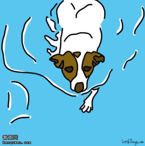 2ch:我们的搭档,爱犬教给我们的人生中11个重要的事情