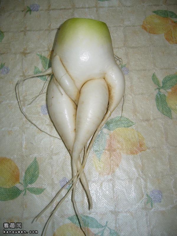 2ch:过于工口的番薯被发现了