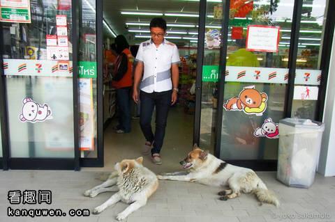 2ch:泰国便利店里的常有的光景www