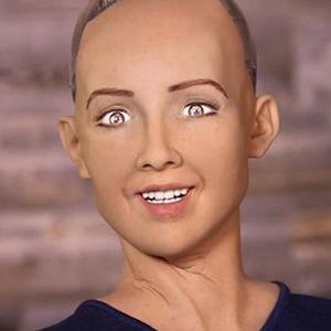 """2ch:【悲报】人工智能机器人在采访中宣言…""""会让人类灭亡的"""""""