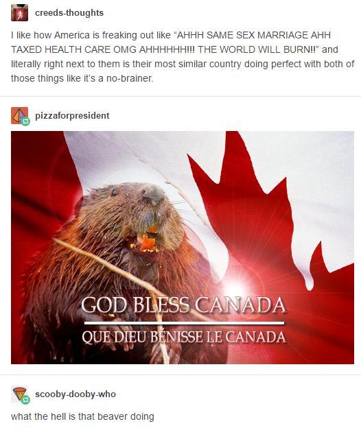『加拿大系列』論加拿大人怎麽秀存在感