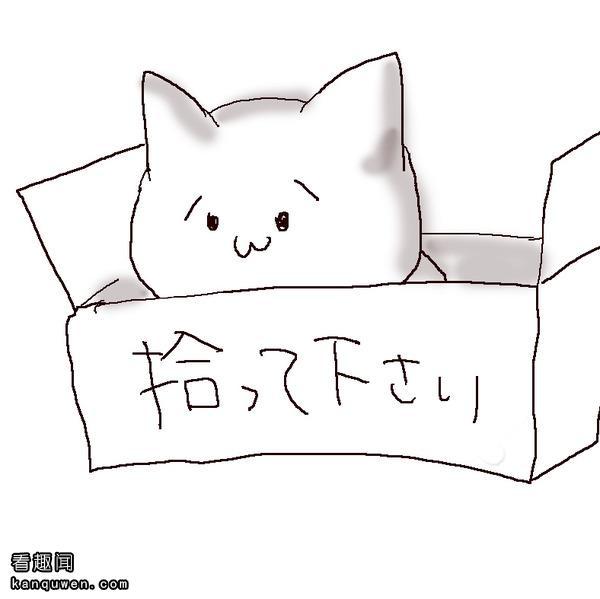 2ch:(´・ω・`)←我捡到了这个但是……